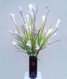 Hoa Rum trắng