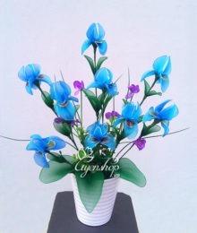 hoa voan - hoa lan buom - uyenshop