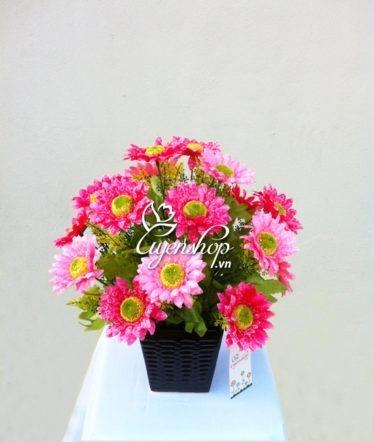 hoa huong duong - hoa lua - uyenshop