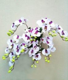 hoa lua - treo tuong trang - uyenshop