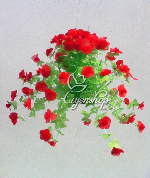 hoa giay do - uyenshop