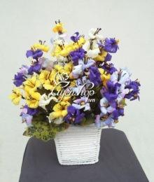 hoa de ban - sac nau dep - hoalua-uyenshop