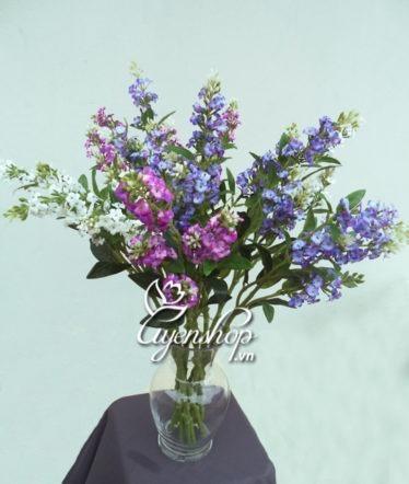 hoa lavender - hoa lua - uyenshop