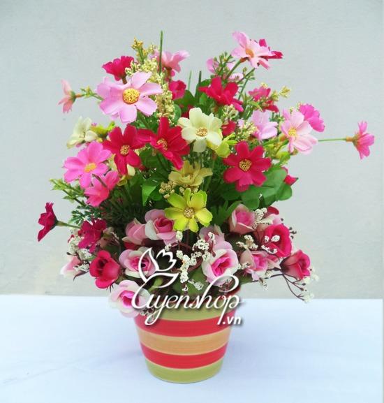 hoa gia - lo hoa nho de ban