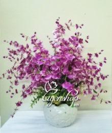 hoa gia - hoa vu nu - uyenshop