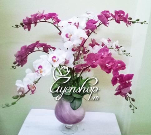 hoa lụa - lan hồ điệp - uyenshop