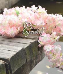 hoa gia - hoa anh dao - uyenshop