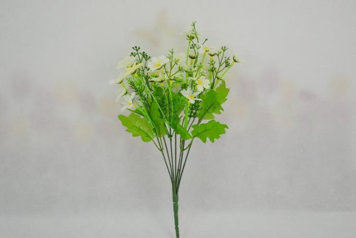 hoa gia - hoa canh cuc thach thao