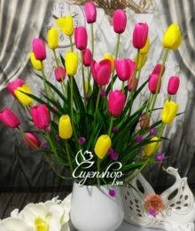 hoa tulip hong vang