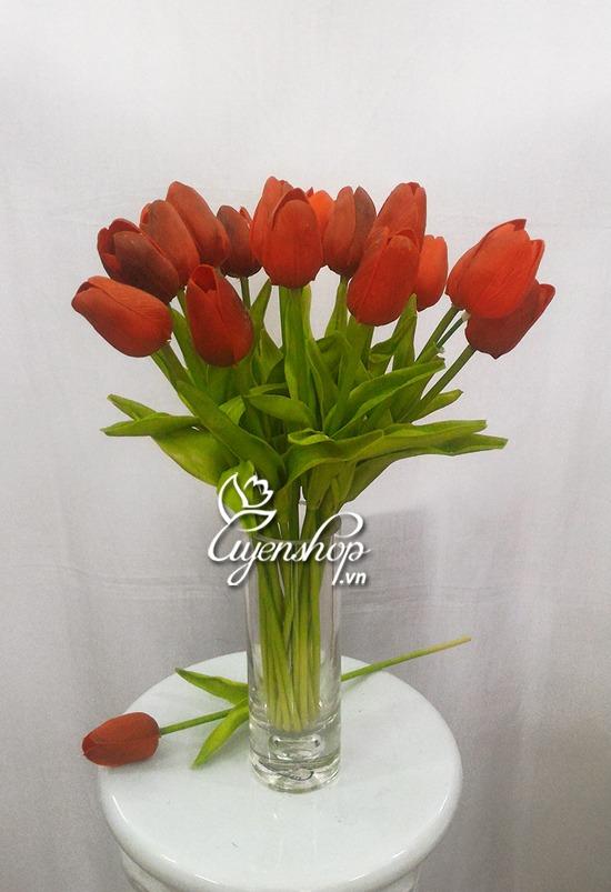 hoa tulip do nho