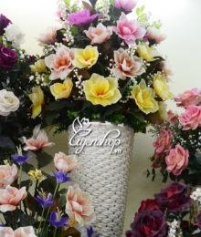 hoa moc lan lon