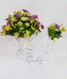 Xe đạp to hoa Thạch thảo