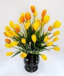 Hoa tulip vàng cam