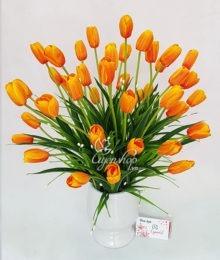 Bình tulip cam