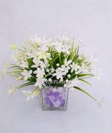 Bình hoa Thủy tiên trắng