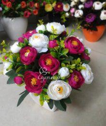Hoa trà trắng tím