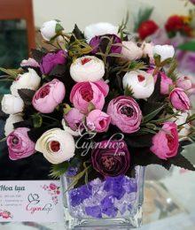 Hoa Trà xinh